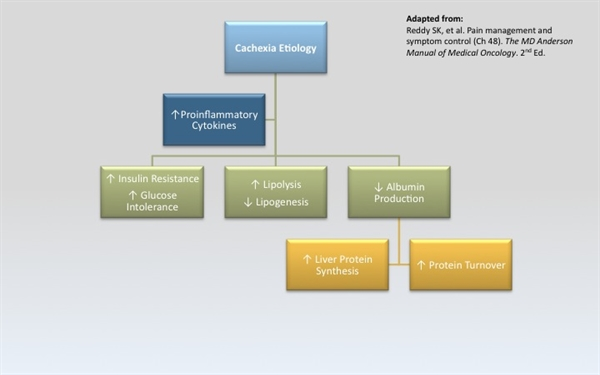 Pathophysiology of Cachexia