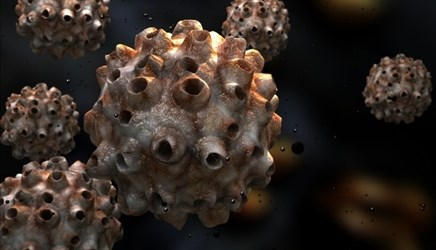 HPV-Targeted T Cells May Be Effective for Metastatic Cervical Cancer