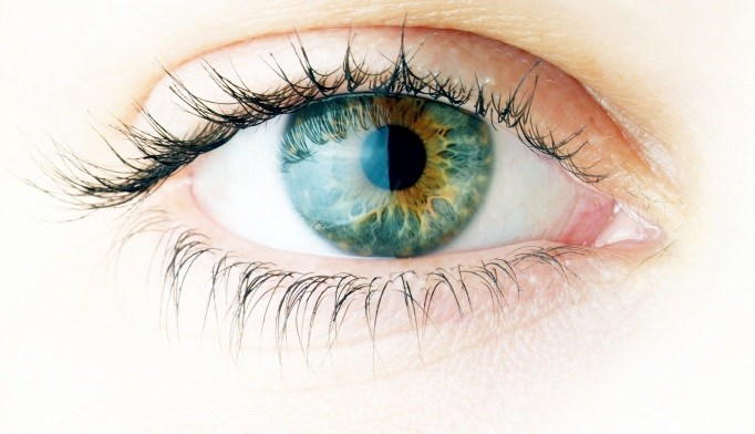 Low vitamin D levels appear to be associated with dry eye and impaired tear function.