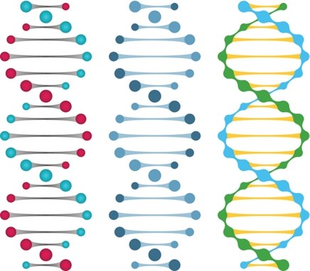 Genomic Research Indicates the Need for Cancer Reclassification