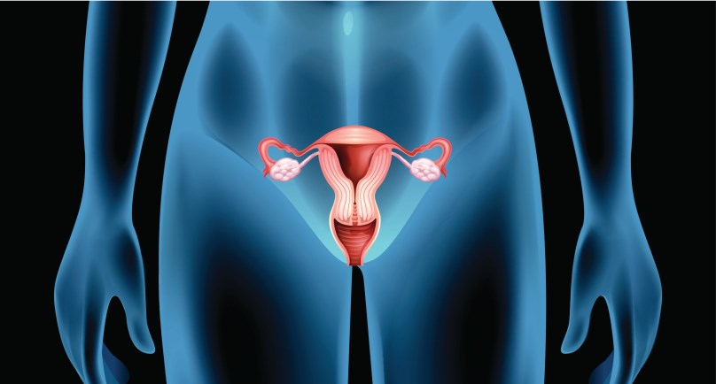 Although most female patients regain fertility after CHOP-like chemotherapy for aggressive lymphoma, late ovarian impairment occurs frequently.