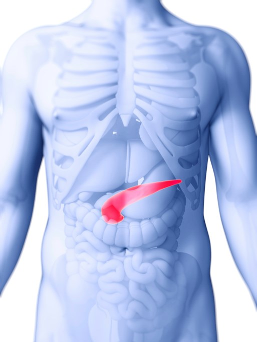 Common Mutations Associated with Increased Risk for Pancreatic Cancer