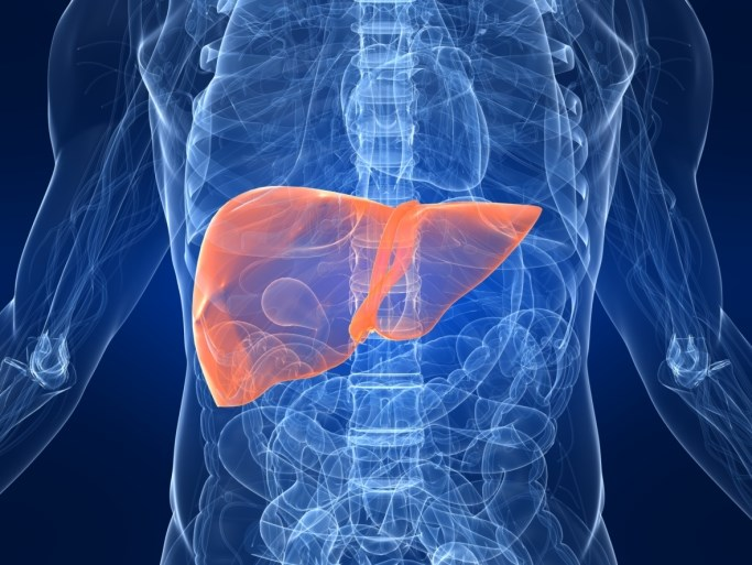 Nivolumab Shows Promising Efficacy, Safety in Advanced Hepatocellular Carcinoma