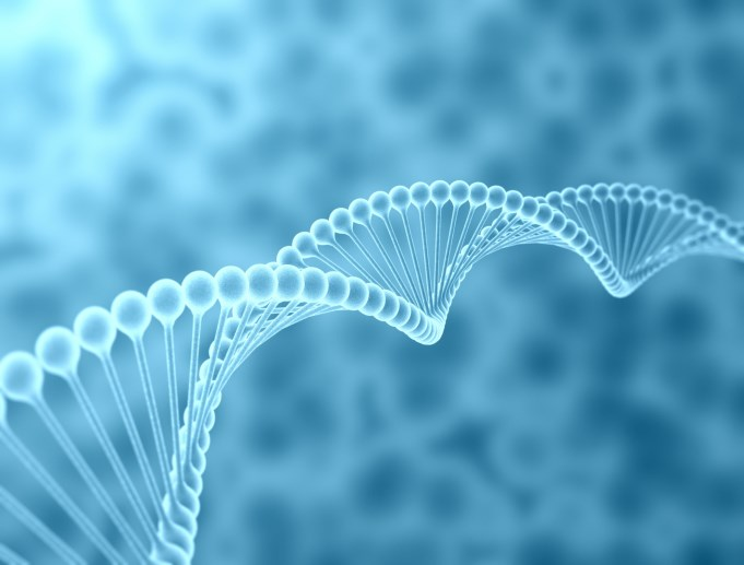 No Association Between Common Genetic Mutations, Prostate Cancer Survival