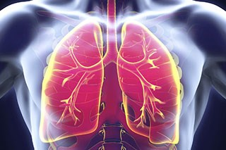A comprehensive review of the 6 drugs approved for the treatment of patients with metastatic squamous and nonsquamous non-small cell lung cancer.