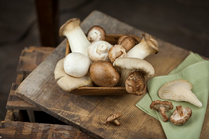 Shiitake Mushroom, Lentinan, and Cancer