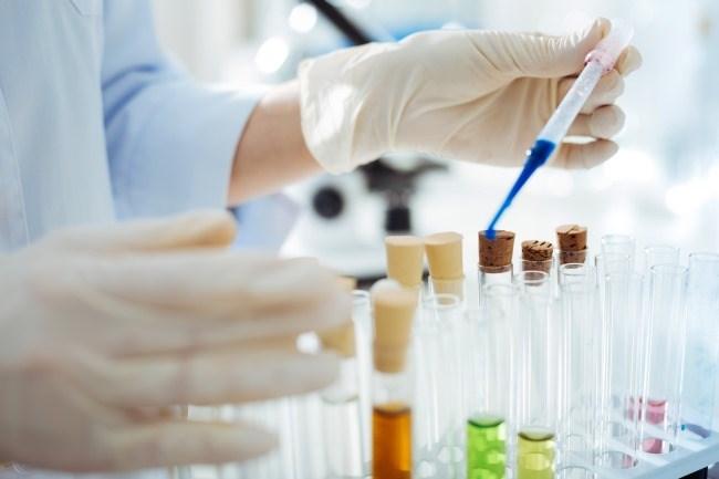Multigene Test May Help Identify Hereditary Kidney Cancers