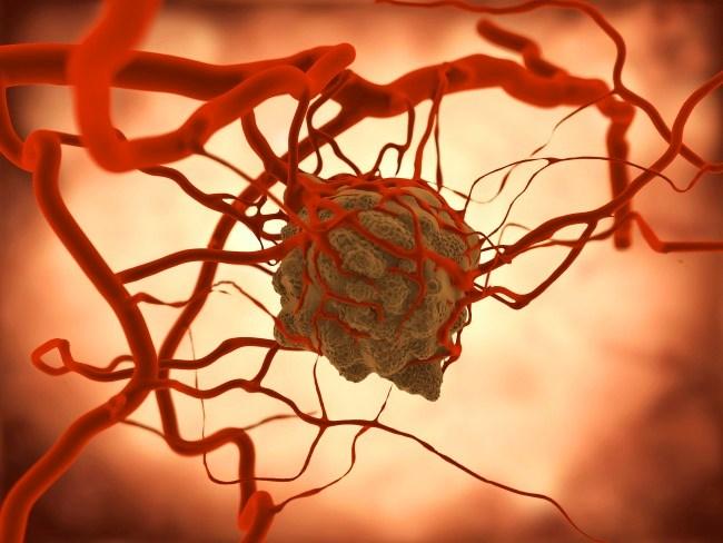 Establishing Links Between Germline Mutations and Oncogenesis