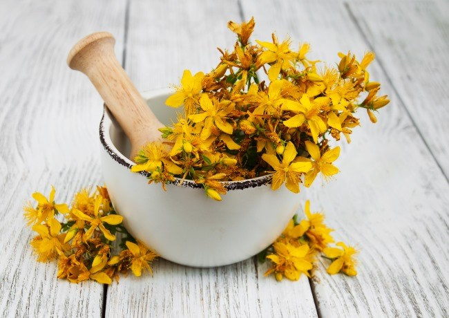 St John's Wort and Cancer