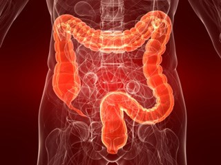 Gut Hormone Activity Potentially Linked to Intestinal Tumors