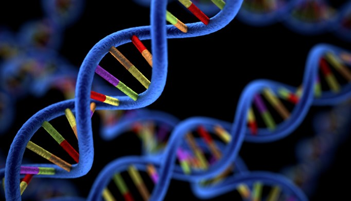 Genetic Variants May Account for Poorer ECT Response in Treatment-Resistant Patients