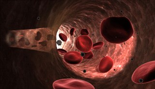 New Oral Anticoagulants: An Update Relevant to Treating Patients with Cancer