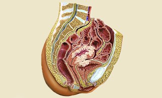 Endometrial cancer / Photo credit: Science Source