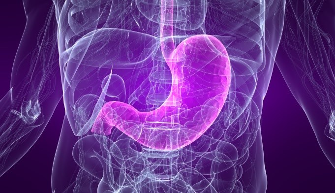 Second-Line Trastuzumab Active in HER2-positive Advanced/Recurrent Gastric Cancer
