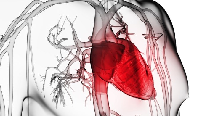 Normal Heart Imaging Linked to Lower Coronary Artery Disease Events in Diabetes