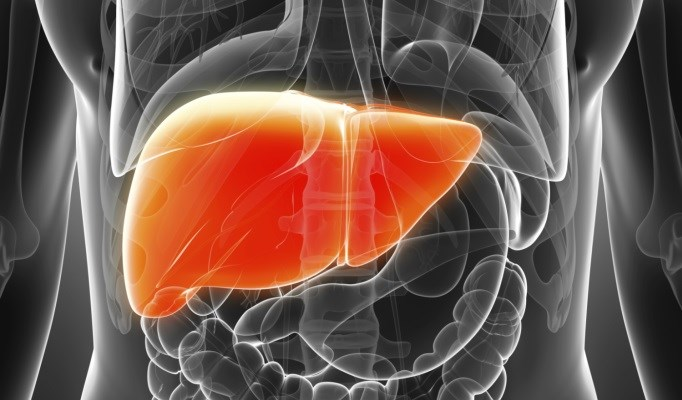 Fatty Liver Disease May Be Less Common in Type 1 Diabetes