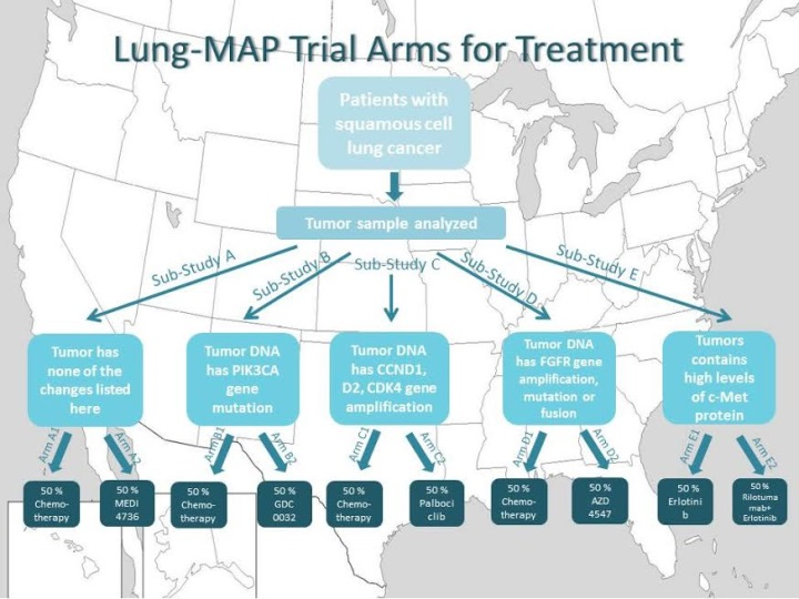 Lung-MAP