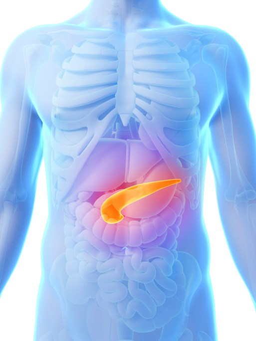 New advances regarding treatment options for metastatic pancreatic cancer.