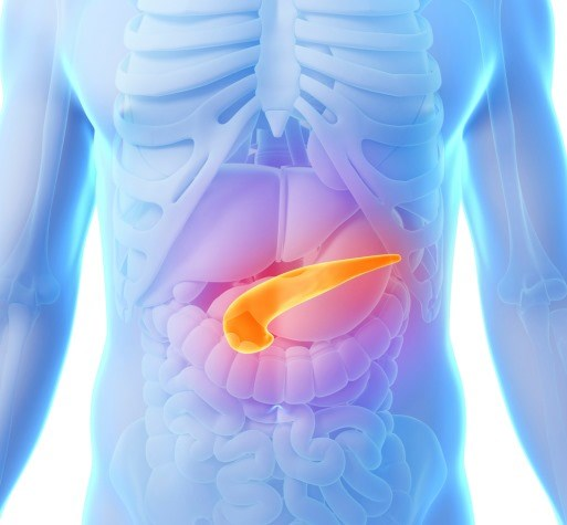 Baseline Appetite Associated With Outcomes in Metastatic Pancreatic Ductal Adenocarcinoma