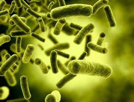 Clostridium Difficile Infection in Patients With Cancer — In the Clinic