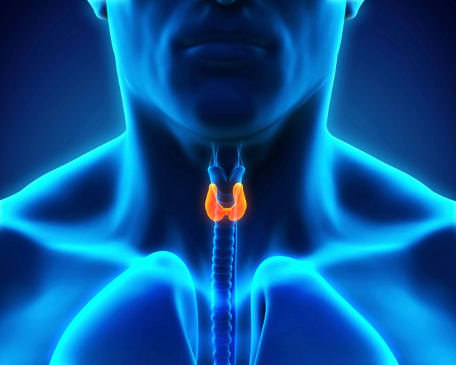 The FDA approved Lenvima (lenvatinib) for the treatment of patients with progressive, differentiated thyroid cancer.