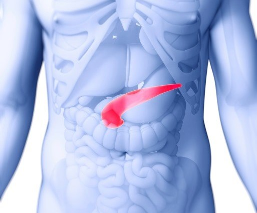 Stereotactic Body Radiotherapy Using Fiducial Implants for Pancreatic Cancer