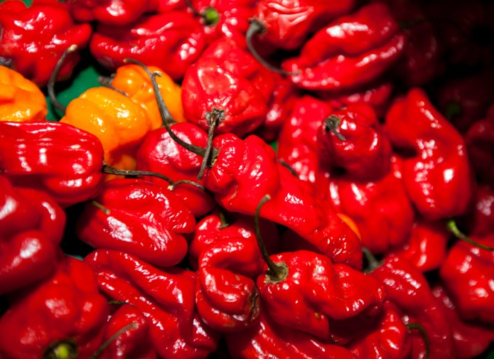 Adults who regularly eat spicy foods appear to have a reduced mortality risk.