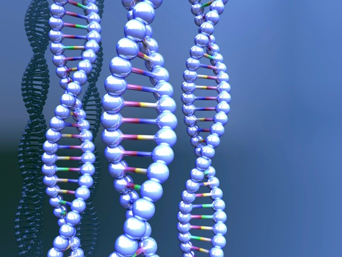 New technologies and methodological approaches are starting to elucidate the relationship between DNA and complex human behavior.
