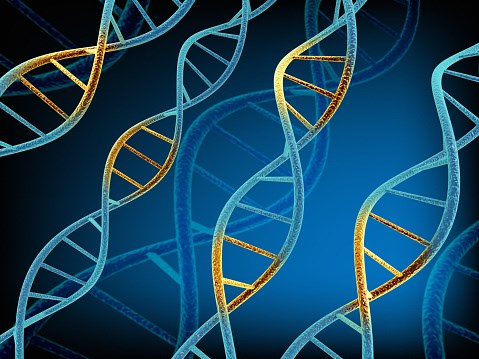 Phase 2 Study Targeting Specific Genes in Pediatric Solid Tumors