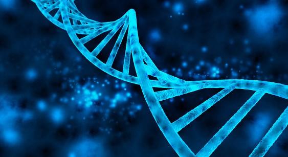 BRCA1, RAD51C Methylation Linked to Response to PARP Inhibitors