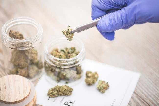 While some researchers are attempting to determine whether cannabis has any anti-tumor activity, the FDA recommends that patients do not listen to websites touting the benefits of cannabidiol.