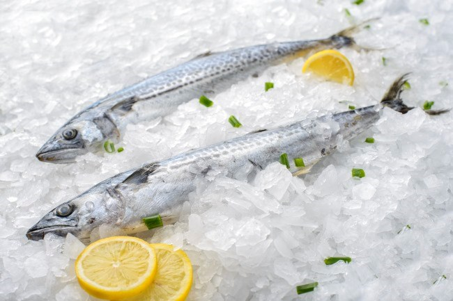 Fish Consumption and Cancer