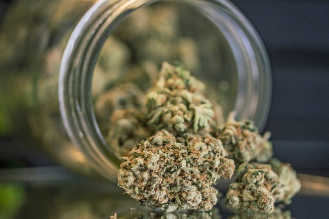 Cannabis and its synthetic cannabinoids have been studied for medicinal properties across multiple disease states.