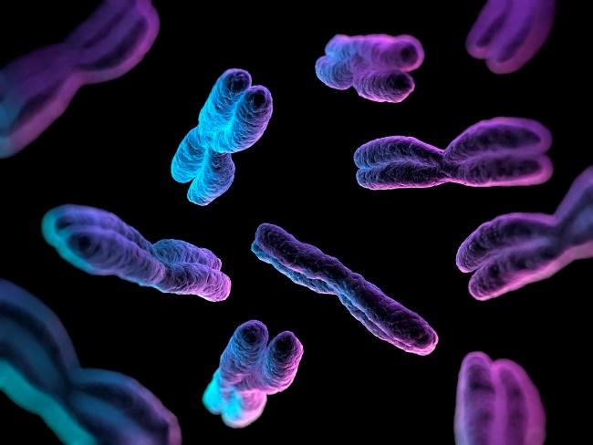 CRISPR Method of Gene Editing Creates Massive Genetic Reshuffling