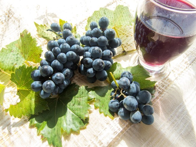 Resveratrol and Cancer
