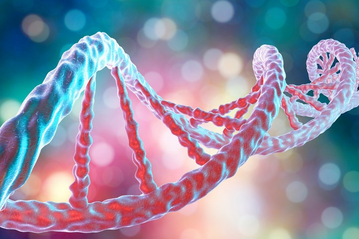 Study Reveals Scope of Genomic Variation Within Cancer Cell Lines