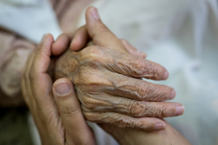 This fact sheet discusses the importance of palliative care as it pertains to cancer survivorship.