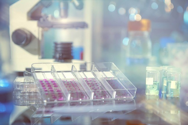 Liquid Biopsy as a Surveillance Tool for Breast Cancer Follow-Up