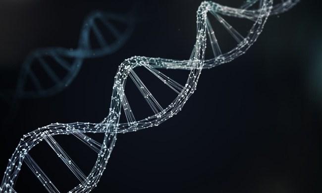 Preexisting Immunity to CRISPR-Cas9: A Problem for Gene Editing in Cancer?