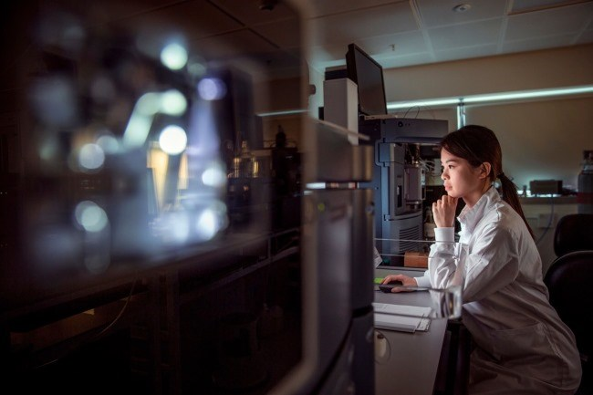 Specific T Cells Play Key Role in Melanoma-Immune Equilibrium