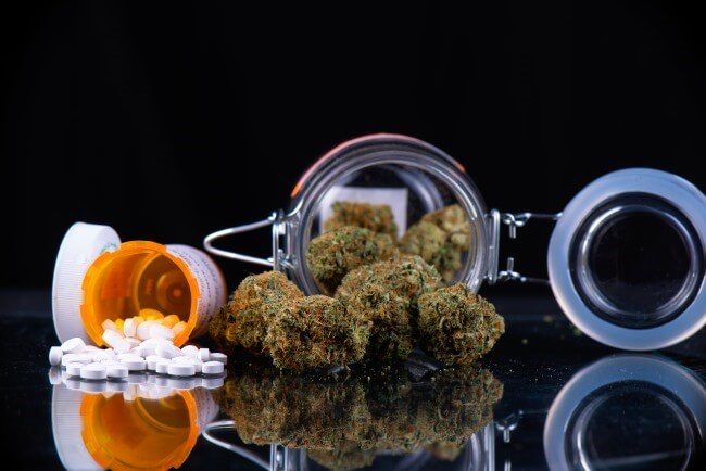 Reducing the Reliance on Opioids for Cancer Pain: Is the Switch to Cannabis a Viable Option?