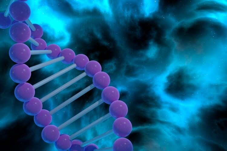 Guidelines for Germline Genetic Testing in PCa Insufficient