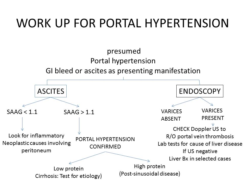 Portal Hypertension Cancer Therapy Advisor