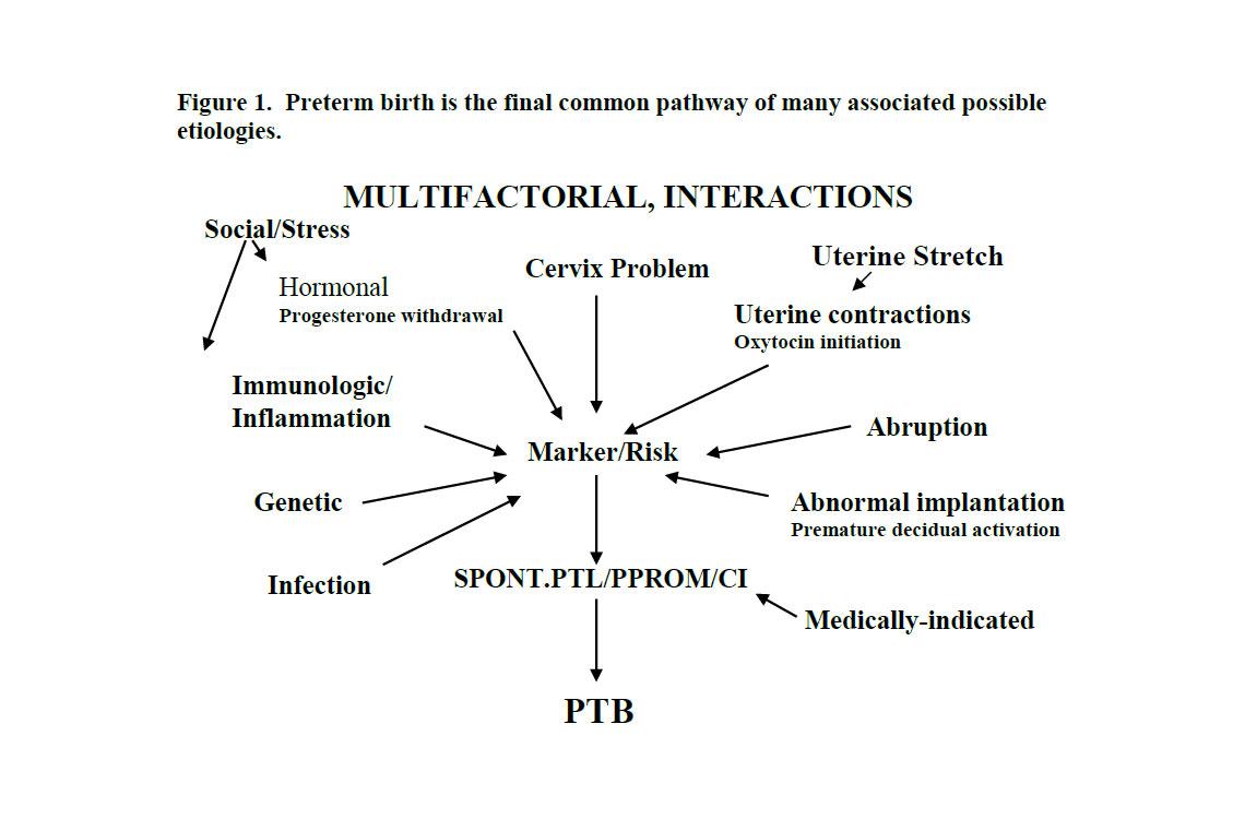 Progesterone insufficiency